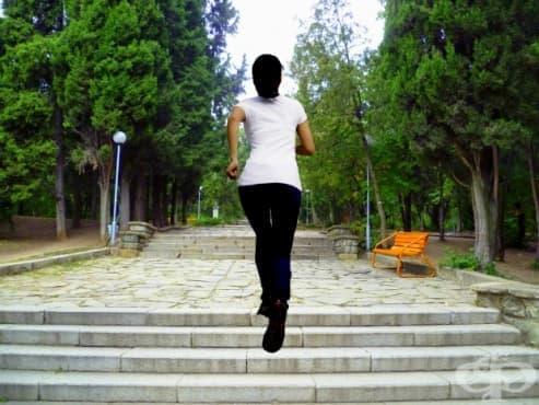 Нискоинтензивни кардио тренировки и ползите от тях - изображение