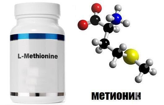 Метионин като спортна добавка - изображение