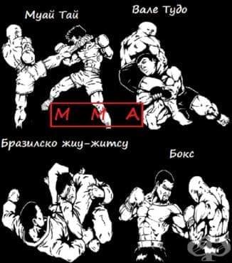 Смесени бойни изкуства (ММА) - изображение