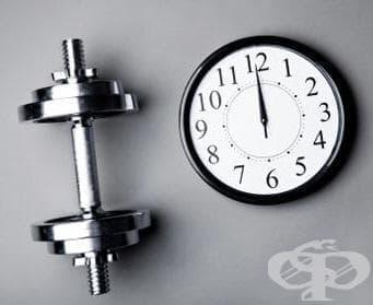 Кое е най-доброто време за тренировка? - изображение
