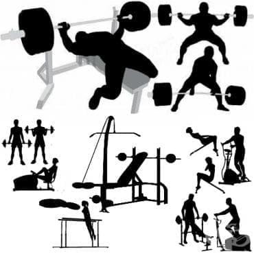 Най-добрите сред добрите упражнения за мускулна маса - изображение