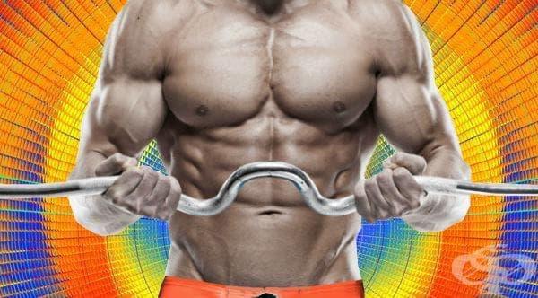 Най-добрите упражнения за всяка част на тялото според науката - изображение