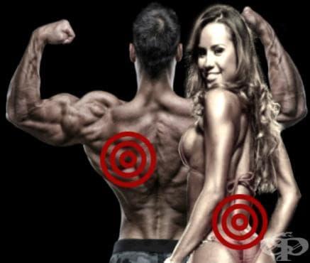 8 неща, които не трябва да правите в тренировката за гръб - изображение