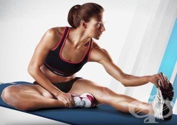 Основни стречинг упражнения при тренировка - изображение