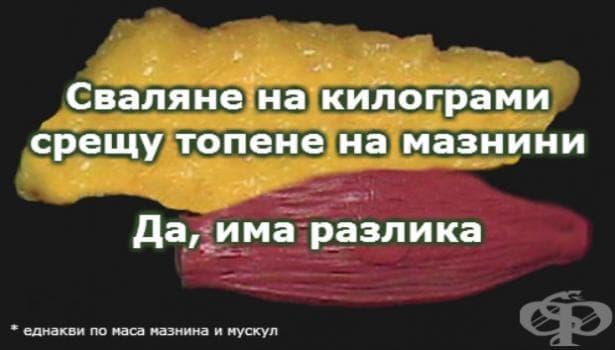 Сваляне на килограми срещу топене на мазнини – да, има разлика! - изображение