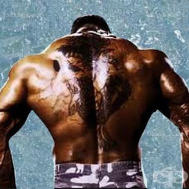 Упражнения за екстремна плътност на гърба - изображение