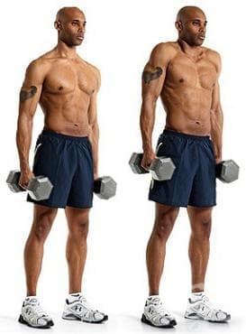Тренировка за трапец – повдигане на рамене с дъмбели - изображение