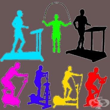 4 важни мускула, които трениращите игнорират - изображение