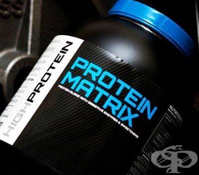 Протеинови матрици - изображение