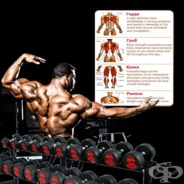 4 съвета за съставяне на перфектната тренировъчна програма - изображение