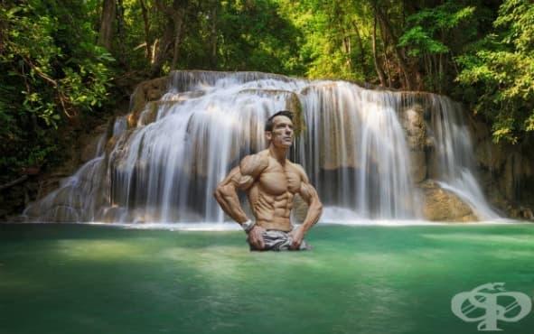 Как да постигнете релефна мускулатура – върховното ръководство - изображение
