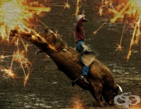 Езда на бикове - изображение