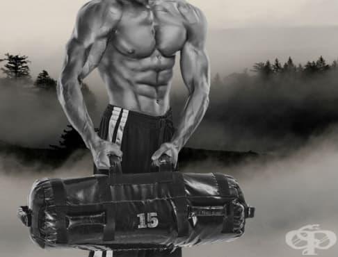 Ръководство за начинаещи за тренировка с пясъчна торба + бърза тренировка за 650 мускула в тялото - изображение