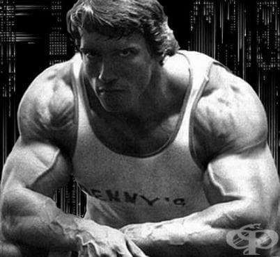 Тренировъчна програма на Арнолд Шварценегер - изображение