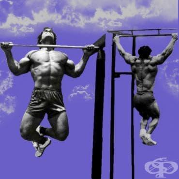 Съвети при тренировката за гръб - изображение