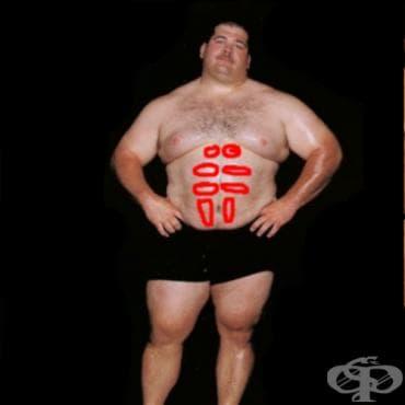 Когато упражненията за корем не са ефективни? - изображение
