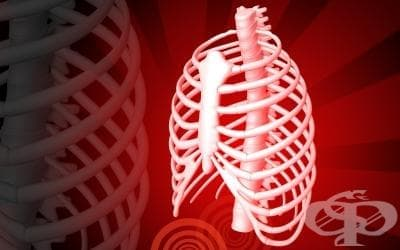 Фрактура на ребрата при спортисти - изображение