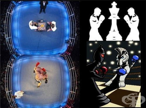 Шах-бокс - изображение