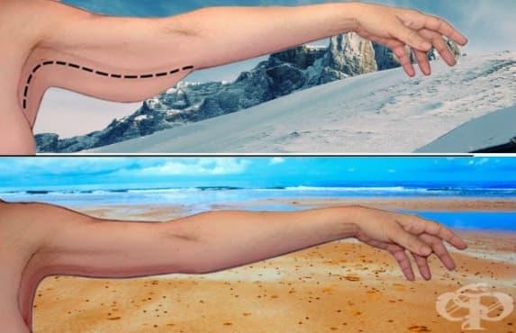 Отървете се от отпуснатата задна част на ръцете с 5 лесни упражнения - изображение