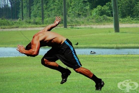 Спринтът като начин за натрупване на мускулна маса - изображение
