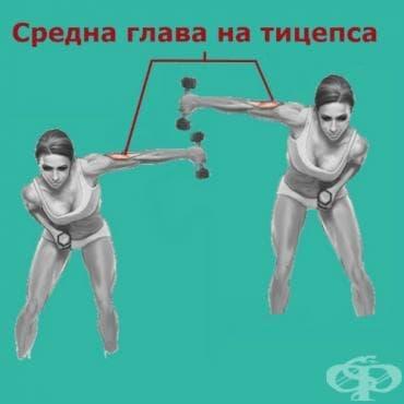 Странични трицепс екстензии - изображение