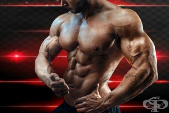 Тренировка със супер серии за гърди и бицепси - изображение