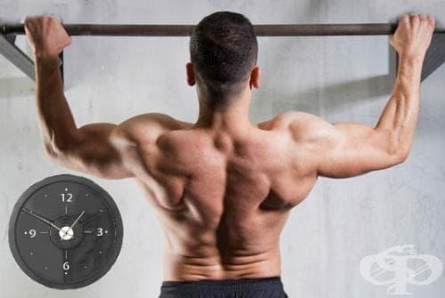 Тест за вертикална сила и издръжливост - изображение