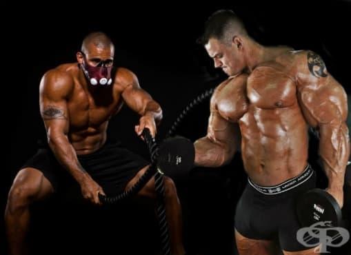 Плътна и твърда мускулатура срещу обемна, културистична мускулатура - какви са разликите - изображение