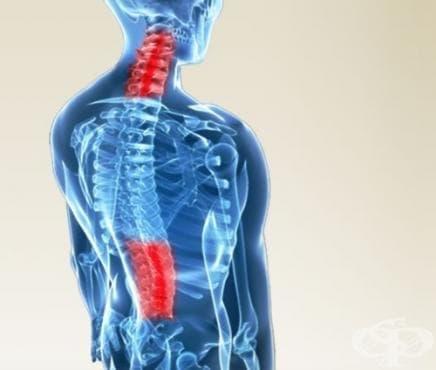 Травми на гръбначния стълб в спорта - изображение