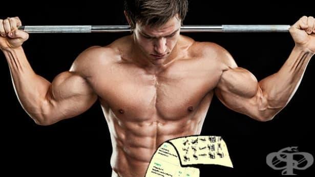 Как да си направите тренировъчна програма сами? - изображение