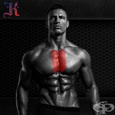 Тренировка за вътрешната част на гърдите - изображение