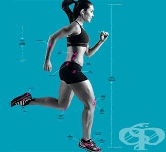 Основни упражнения за повишаване стабилността на тялото при спортисти - изображение