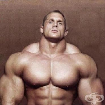 Как се тренира трапецовидния мускул? - изображение