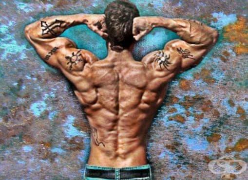 Тренировка за по-големи, по-силни и по-здрави рамене - изображение