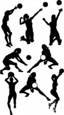 Волейбол - изображение