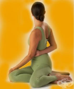 Йога пози – Барадважа - изображение