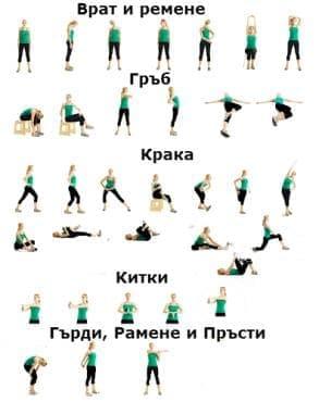Загряване и разпускане на мускулите преди и след тренировка - изображение