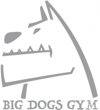 """Фитнес клуб """"Big Dogs Gym"""", гр. Русе - изображение"""
