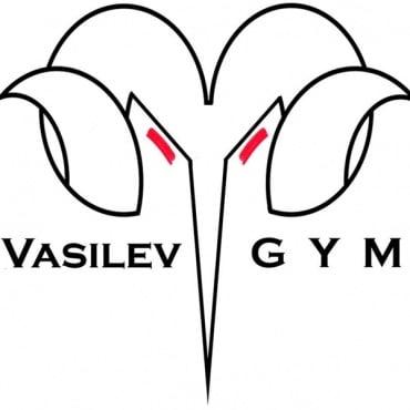"""Фитнес зала """"Vasilev Gym"""", гр. Враца - изображение"""