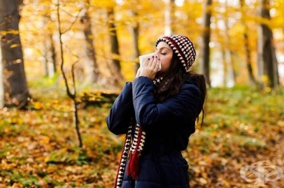 Алергична кашлица - изображение