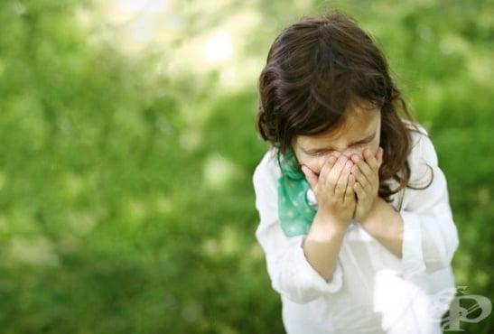 Алергична кашлица при деца - изображение