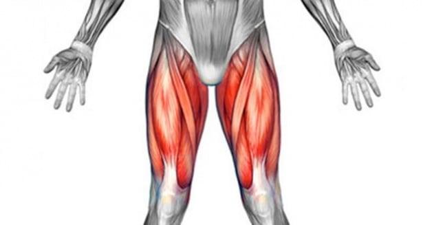 Болка в горната част на бедрото - изображение