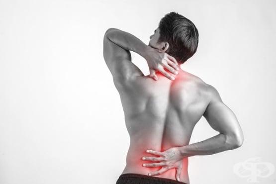 Болки в мускулите - изображение