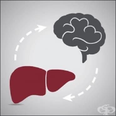 Чернодробна енцефалопатия - изображение