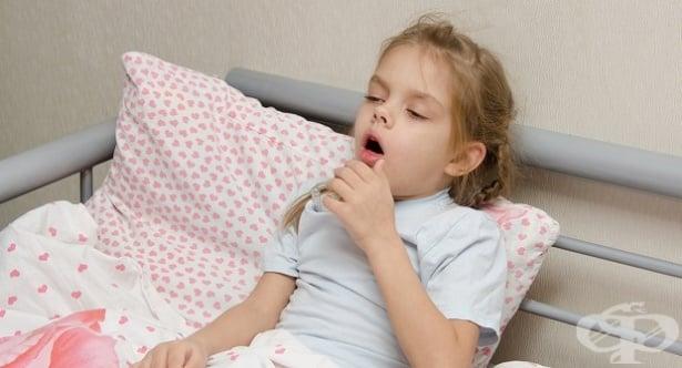 Магарешка кашлица - изображение