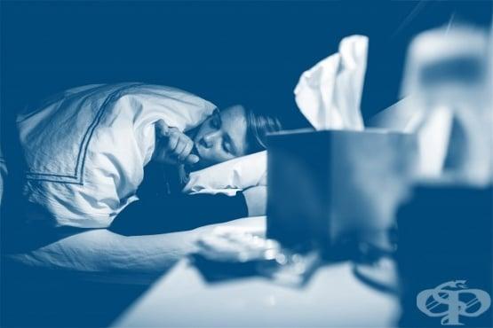 Нощна (вечерна) кашлица - изображение