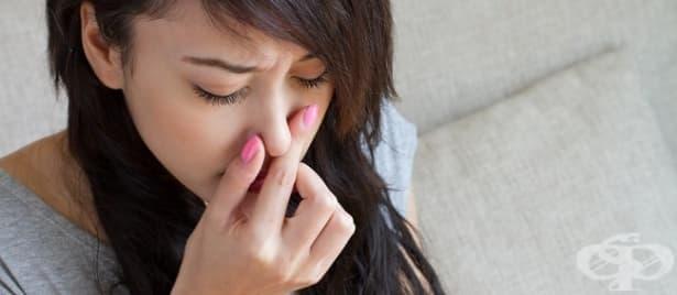 Постоянни болки в носа - изображение