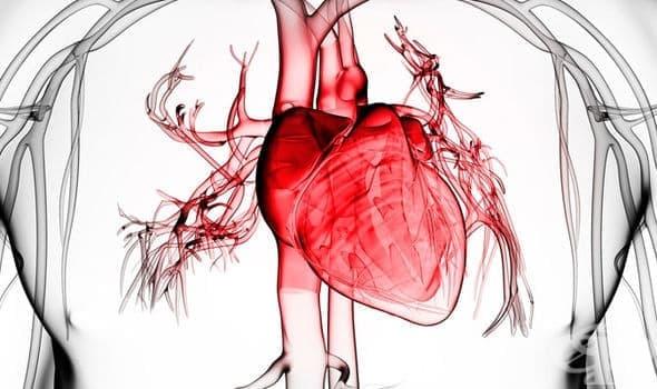 Сърдечно-съдови нарушения - изображение