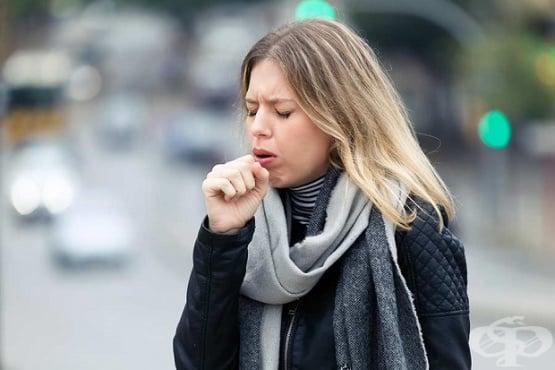 Упорита кашлица - изображение