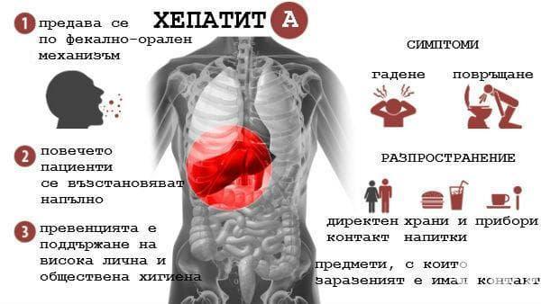Тест за хепатит А - изображение